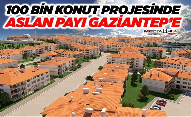 Aslan payı Gaziantep'in!