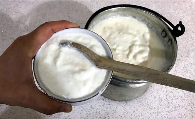 Yoğurt gripten koruyor!
