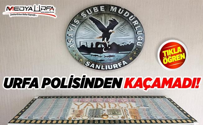Bursa'da dolandırdı, Urfa'da yakalandı