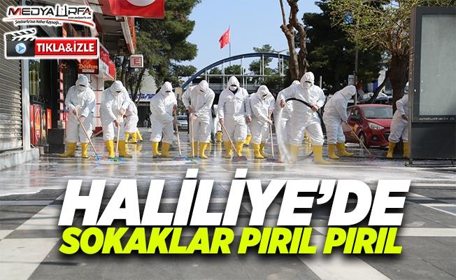 Haliliye'de dezenfekte çalışmaları tam hız sürüyor