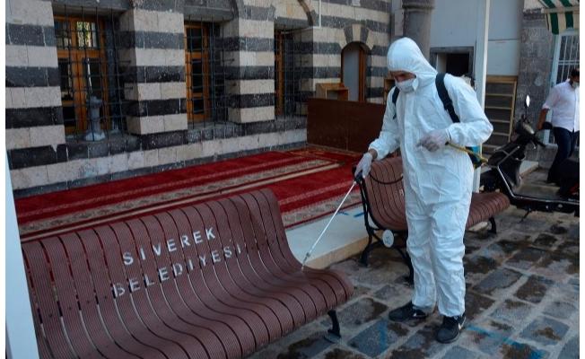 Siverek camileri dezenfekte ediliyor