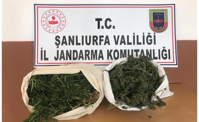 Şanlıurfa'da uyuşturucu operasyonunda 2 zanlı tutuklandı