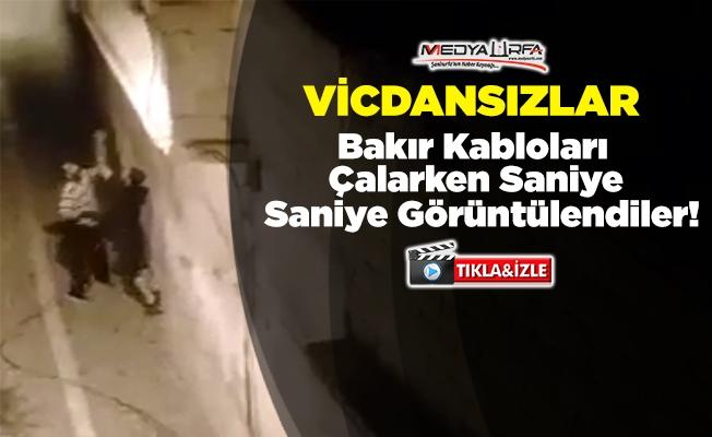Türk Telekom'un bakır kablolarını çaldılar
