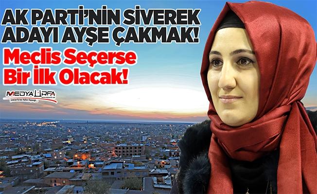 Siverek'te başkan adaylığına sürpriz isim