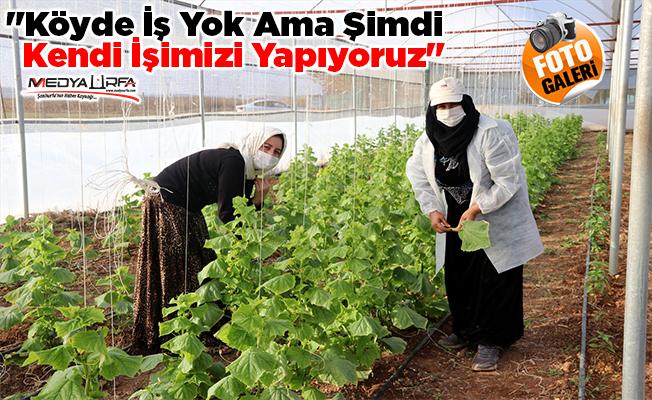 Köylü kadınlar, yöresel ürünlerle gelir sağlıyor