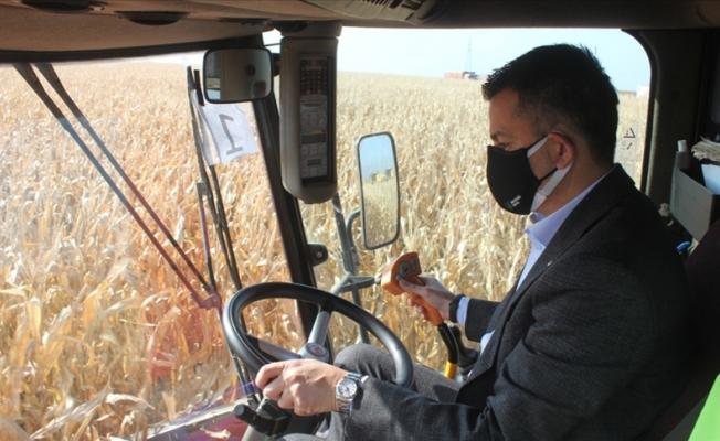 Pakdemirli mısır hasadı ve buğday ekimi yaptı