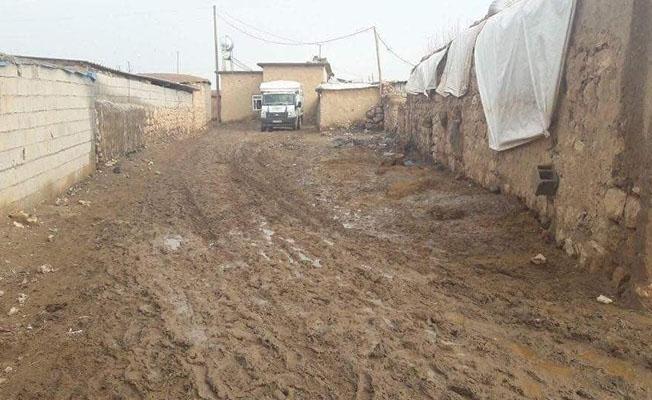 Ceylan mahallesi çamurdan geçilmiyor