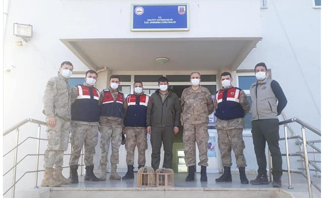 Şanlıurfa'da kaçak avlanan 11 kişi yakalandı