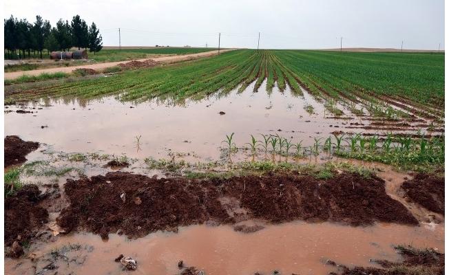 Kuraklık tarımsal sulamadaki elektrik faturasını artırıyor