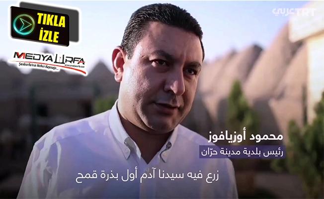 Özyavuz TRT Arapça'da Harran'ı anlattı