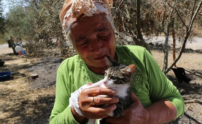 Yangından kurtulan yaşlı çift kedilerine kavuştu