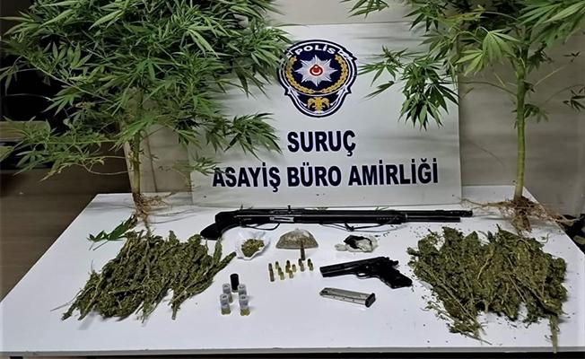 Suruç'ta uyuşturucu operasyonunda 1 şüpheli yakalandı