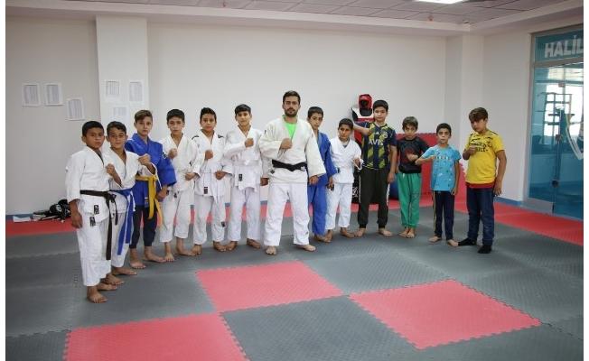 Haliliye'de lisanslı judocular yetişiyor