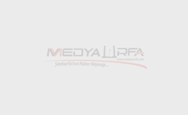 Eyyübiye'de 2 Terörist Yakalandı