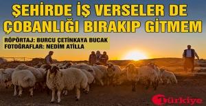 Siverekli Çobanın 55 Yıllık Hayat...