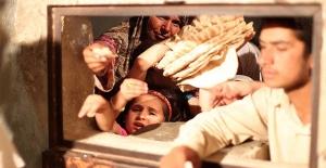 Yokluğun Adı: Halep