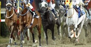 Şanlıurfa'da At Yarışında 3 Jokey Yaralandı