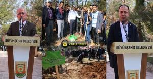 Şanlıurfa'da 5 Bin Ağaç Fidanı Toprakla Buluşturuldu