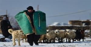 Yazın Koyun Güdüyor, Kışın Kayak Öğretiyor