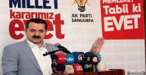 Bakan Çelik: Adana'da Ekmekte GDO Tespit Edilmedi