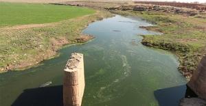 Ceylanpınar'da Çadır Kentin Atık Suyuna İnceleme