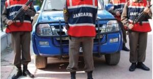 Jandarma Şanlıurfa'da Hayvan Hırsızlarına Karşı Özel Ekip Kurdu