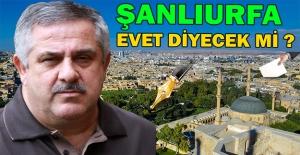 Sedat Atilla Referandumu Yazdı
