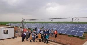 Tarım Danışmanlarına Yenilenebilir Enerji Eğitimi