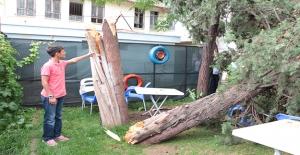 Ceylanpınar'da Fırtına ve Sağanak Yağış Etkili Oldu