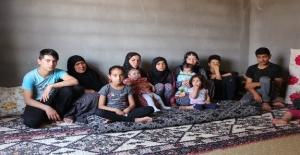 Terör Örgütlerinden Kaçan Suriyeliler Evlerine Dönmek İstiyor