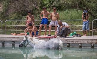 Fırat Nehri, Hem Kendilerini Hem Atlarını Serinletti