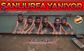 Şanlıurfa'da Sıcak Hava Çocukları Suya Döktü