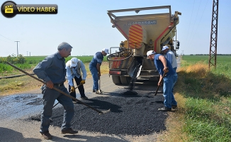 Ceylanpınar Kırsalında Onarım Çalışmaları Sürüyor