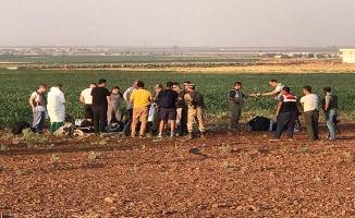 20 kişilik ABD heyeti Viranşehir'de incelemelerde bulundu