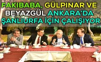 Fakıbaba'dan Ankara'da Şanlıurfa İçin Yoğun Mesai