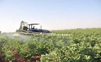 Urfa'da preseli pamuk 5,80 liradan işlem gördü