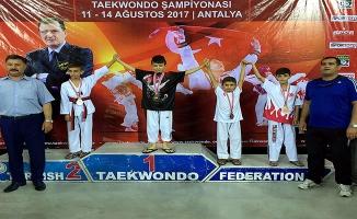 Urfalı Minikler Taekwondo Şampiyonasında