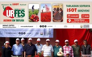İsot Festivali ''Tarladan Sofraya İsot Serüveni' ile sürüyor