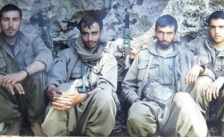 PKK'nın sözde bölge sorumlusu etkisiz hale getirildi
