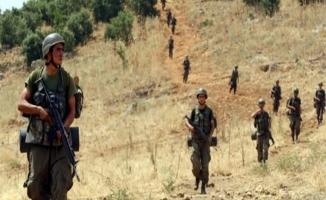 Şanlıurfa'nın Suriye sınırında bir terörist yakalandı