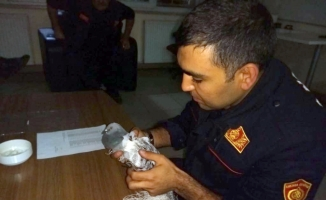 Fileye takılan güvercin kurtarıldı
