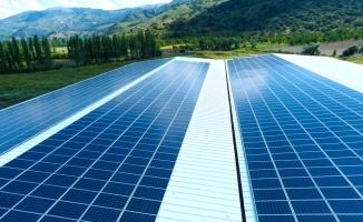 Ceylanpınar TİGEM'de Güneş Enerjisi Santrali kurulacak