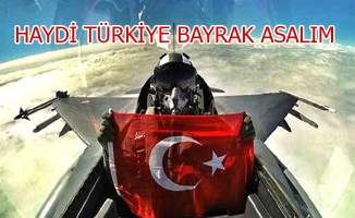 Haydi Türkiye Bayrak Asalım