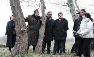Vali Şahin Bathonea kazı alanını inceledi