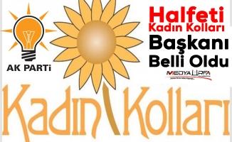 AK Parti Halfeti Kadın Kollarına Bilgin getirildi