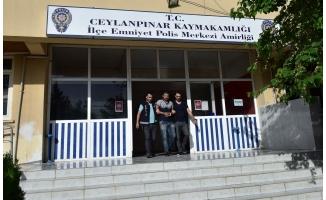 Ceylanpınar'da uyuşturucu operasyonu: 2 tutuklama