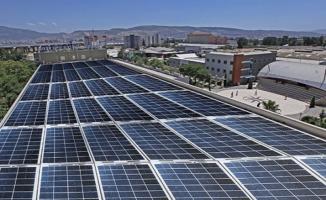 En fazla lisanssız elektrik üretimi Şanlıurfa'da