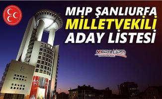 MHP milletvekili adayı listesi açıklandı