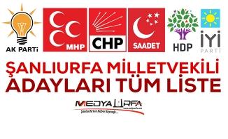 Urfa'da seçime giren siyasi partilerin milletvekili adayları