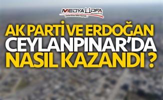 Erdoğan ve AK Parti Ceylanpınar'da nasıl kazandı ?